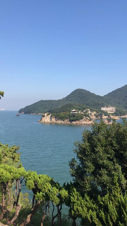 圓福寺の写真・動画_video_1413