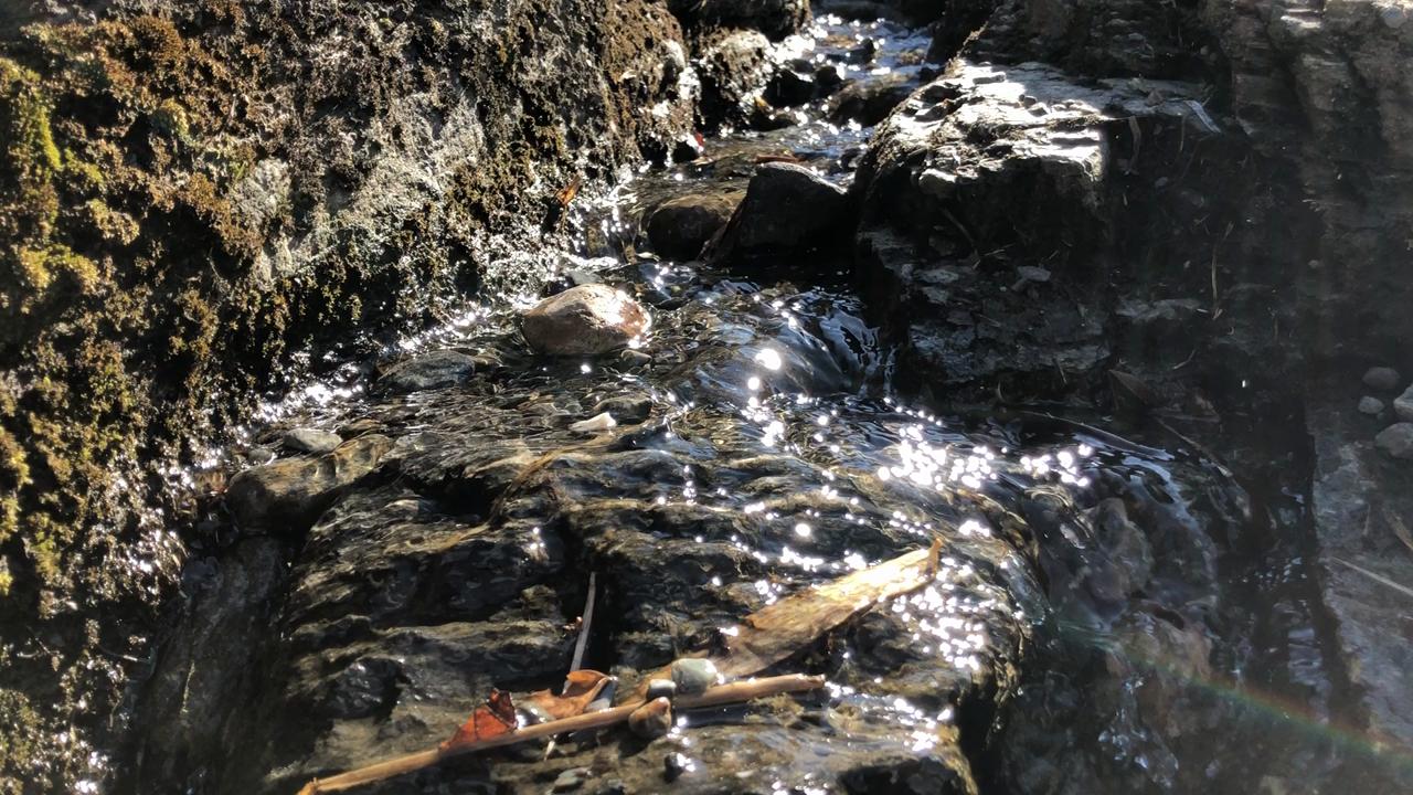 長瀞岩畳の写真・動画_video_1644