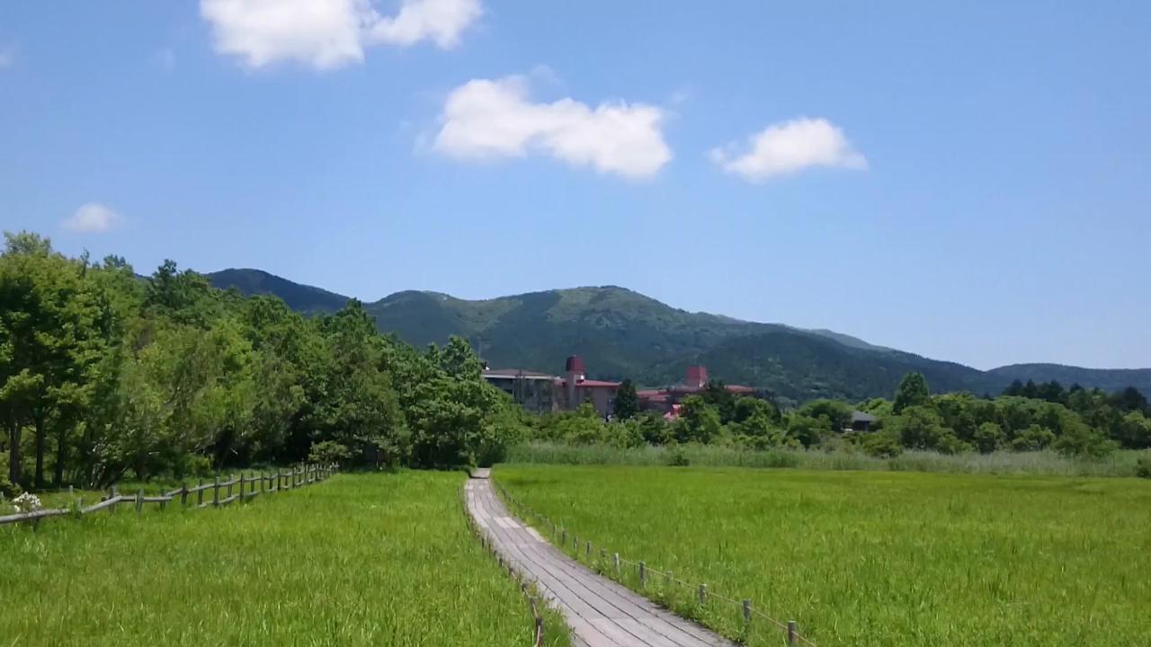 箱根湿生花園の写真・動画_video_2241