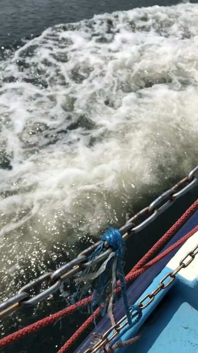 江の島の写真・動画_video_2799