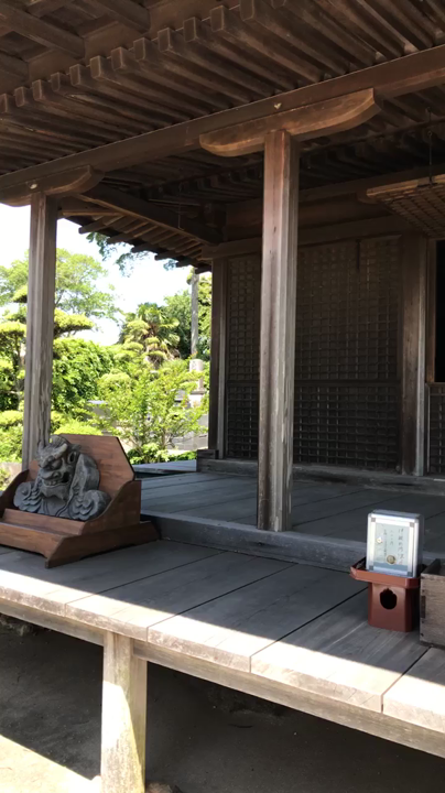 金蓮寺の写真・動画_video_1060