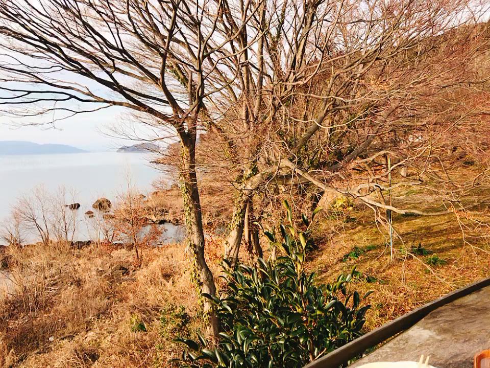シャーレ水ケ浜の写真・動画_video_1391